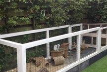 dierenverblijf in tuin - animal's residence in garden [inspiratie]