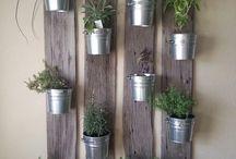 para plantas aromaticas