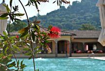 OasiMaremma 2015 / il nostro villaggio, a Scarlino nella Maremma Toscana. Casa Vacanze www.oasimaremma.it