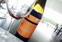 My wines: born in Menfi, Sicily