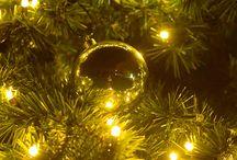 Extraordinaires féeries de Noël au Jardin d'Acclimatation / Le Jardin d'Acclimatation veut offrir aux enfants la magie des vitrines d'antan. Pour la première fois, il propose à ses visiteurs cinq semaines de fêtes dans tout le parc pour célébrer la féerie de Noël. Ce seront pour tous des souvenirs inoubliables : parcours enchanté d'illuminations, grande patinoire dans un décor de sapins, village de Noël avec ses chalets en bois !