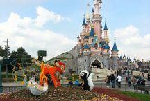 Spring in Paris  / Disneyland Paris, Flowers  / by Crystal Maggio