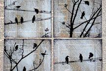 birds on newspaper