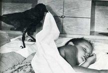 Beautiful Raven/Child