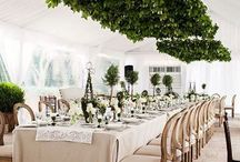 Table Dressings and Party Design