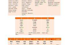 Los verbos irregulares en presente