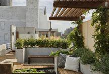 garden and balkony