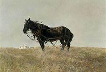 Andrew Wyeth / by Debra-Carolyn Morris Brennan