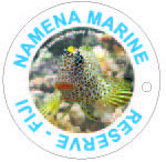Namena Marine Reserve / Best soft coral dives in the world!