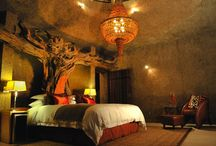 Safari Style / Clothes, lodges and more - design in Africa that inspires us in our everyday lives.