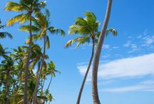 VIVA EL CARIBE  !!!! / Recuerdos del paraíso!!!