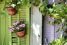 aranżacja balkonu / Wiosna zbliża się wielkimi krokami, pora więc zaprowadzić porządki na swoim balkonie! Koniecznie udekoruj balkon roślinami, które będą cieszyć oko Twoje i Twoich sąsiadów aż do jesieni. Poznaj kolorowe gatunki kwiatów doniczkowych idealnych na balkon, a także pomysły na przytulne i urocze aranżacje balkonowego gniazdka.