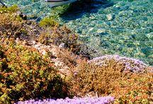 Karpathos / Greek Islands - Dodecanese