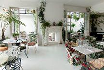 Victoriana Jungle / B&H Building 6th Feb