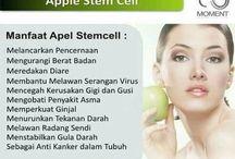 steemcell