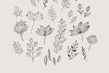 illustration flower