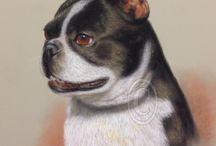 Pet Portraits / Your pet is part of the family too! Why not get a portrait painted of your best friend.