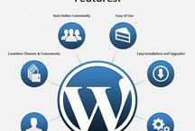 outsource WordPress development