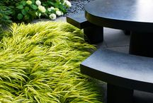 Stylish Gardens / Minimalist