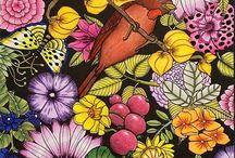 Faglar & fjarilar coloring book