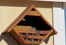 Diy animal houses