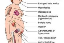 Endocrin