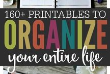 organization/cleaning printables