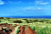 Hawaii, Lanai / Lanai is the sixth-largest of the Hawaiian Islands.  It is also known as Pineapple Island because of its past as an island-wide pineapple plantation.
