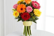 Get Well Flowers / by Coady Florist