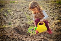 How Growing and Nourishing Plants Can Lead to More Happiness