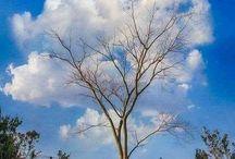 Chmury i chmurki