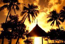 Tonga / Our favourite photos from Tonga.
