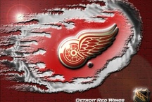 Detroit Red Wing's / by Cher McGinn