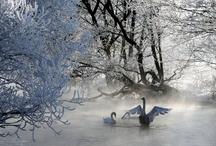 Natura bielorussa