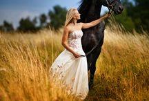 Pferdebilder & Fotos