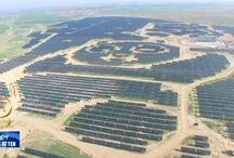 100 Panda shaped solar Plants in the built