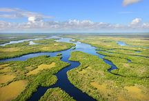 Florida Everglades / by VISIT FLORIDA