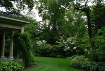 landscaping ideas / by Jane Barnes
