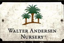 Nurseries and Botanical Gardens