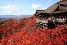 Tokyo and kyoto