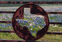 Texas Pin-spirations