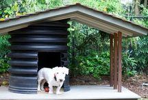 Doggie stuff / by Mel Ash