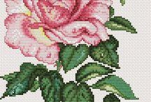 Schema punto croce rosa