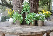 tafel om bome