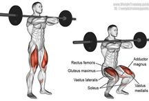 15 compound exercise