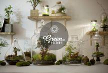 Green Factory des Jardins sous verre