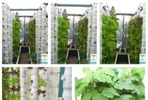 Aquaponics & Hydroponics / Indoor growing, vertical farms, food from Fish waste aquaponics systems ...  LED grow lamps and all you need to know about producing good clean energy efficient organic food