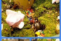 Fairy houses / gardens / by Traci Hoffman