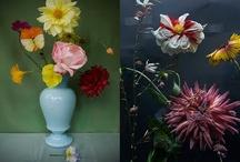 FLOWERS / by Ilona Jongepier