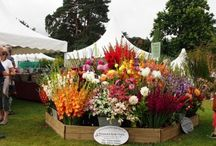 2016 RHS Wisley Flower Show / All about the 2016 RHS Wisley Flower Show!